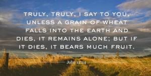 john12.24-01